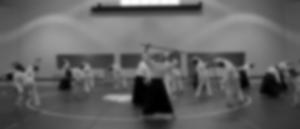 aikido-seminar-bg-1